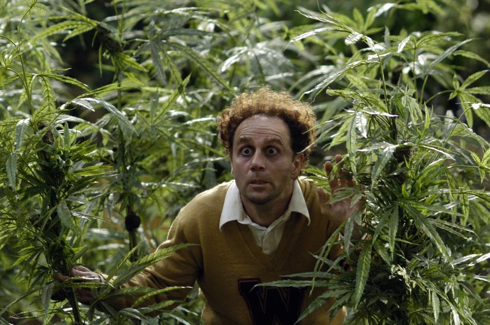 Про марихуану реальные фильмы марихуана в италии форум